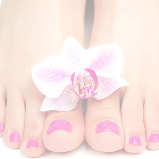 Pedicuresalon Lisette